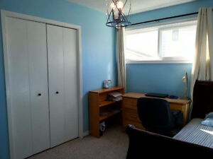 Walkout first floor 1 bedroom furnished suite for rent