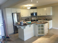 Kitchen refinishing