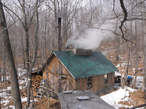 hunting camp and sugar bush Kingston Kingston Area image 3