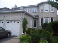 One bedroom basement apartment with separated entrance Thornhill