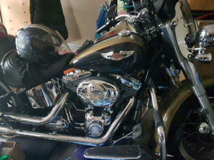 2007 Harley Softail Deluxe