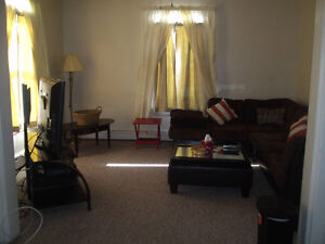 VERY NICE MODERN NON-SMOKING TWO BEDROOM APARTMENT FOR RENT