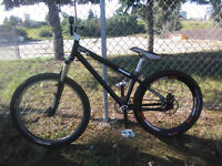 custom Dirt Jump free ride BMX bike