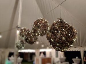 Grapevine balls with LED microlights