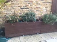 2 LARGE GARDEN PLANTERS FOR SALE £40 EACH