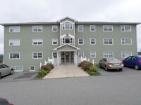 Furnished One bedroom in new building at 240 Coldbrook Cres.