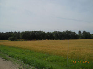 Land for sale near Melfort 26 Acres