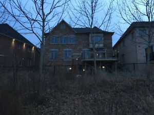 5 year old house walkout for sale.