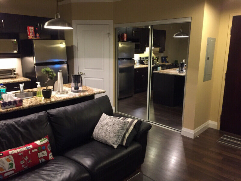 1-Bedroom Loft for Rent in Downtown Kitchener | Apartments ...