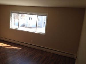 Clean/Bright 3 bdrm millidgeville. Heat/hot water included!