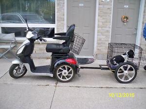 Rickshaw Mobility Scooter