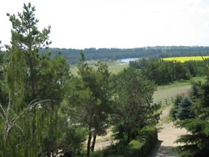 Rural and spacious two bedroom apartment on the Red Deer river