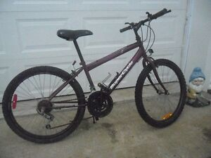 BUNGUNDY 24 INCH SUPER/CYCLE STORM 15 SPEED. [FIRM]