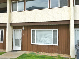 Just like new! Completely renovated townhome in downtown Oliver!