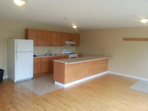 LARGE 4 BDR UNIT IN DOWNTOWN DARTMOUTH, ALL APPLIANCES, AMENTIES