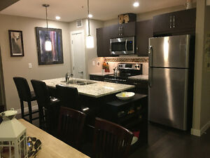 !~1 room in BRAND NEW LUXURY DT 2br, 2ba apartment