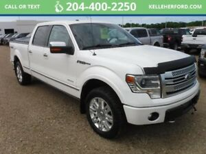 2013 Ford F-150 PlatinumSuperCrew 4x4 --LOADED