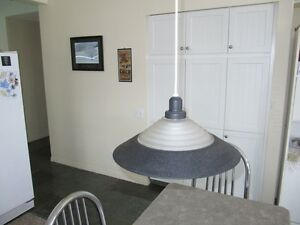 kitchen/island ceiling light