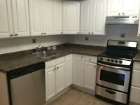 Metcalfe & Cooper Large 1 bedroom available immediately $1129