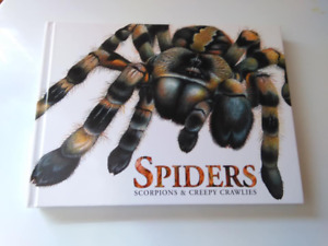 Spiders Scorpions and Creepy Crawlies