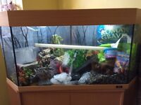 Corner aquarium with stand open to offers