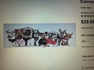 Girls wall decor- canvas puppies from Bouclair Strathcona County Edmonton Area image 1