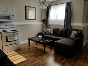 Furnished daylight bsmt suite for rent,