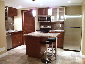 Gorgeous Modern 1 Bedroom Apartment - All Utilities Included!