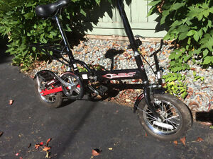 Folding Bicycle Raleigh