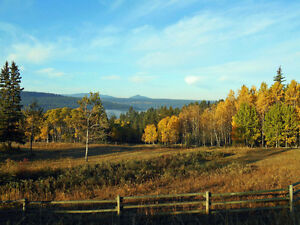 Stunning 26.5 acre property only minutes to Williams Lake Williams Lake Cariboo Area image 10