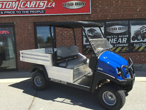 REDUCED 2016 CLUB CAR Carryall 550 48V ELECTRIC - UTILITY CART Kingston Kingston Area image 1