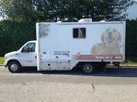Toilettage Mobile Rive-Sud, $35 chat, $40 petit chien,A domicile