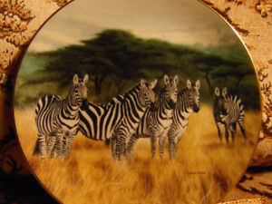 Collector Plates by Charles Frace, Grand Safari – Images of Afri