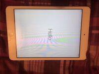 iPad mini with case
