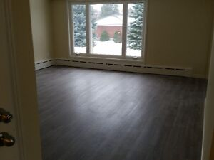 Newly Renovated 3 Bedroom (all inclusive heat,hydro, appliances)