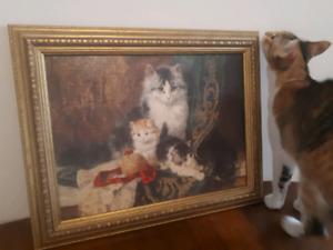 Tableau de chats avec cadre doré - Neuf