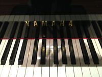 Online Professional Piano & Theory lessons- PhD, MMT, MTA, ARCT