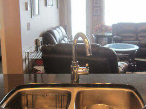 Beautiful 2 bedroom new modern condo 5 minutes from all shopping Regina Regina Area image 5