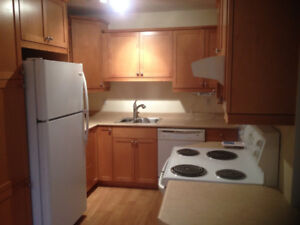 Fort Richmond-Reno'd 5 Bdrm House Steps from UofM,Washer Dryer