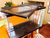 Reptile tank- holds water if needed