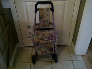 grocery cart Kitchener / Waterloo Kitchener Area image 1