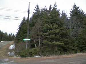0.4 acre wooded lot with storage building in Brackley Beach