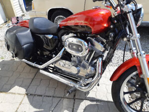 2013 sportster super low