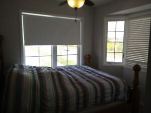 Room for rent Whitby. (Available after Nov 7)