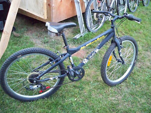 Miele Youth size mountain bike