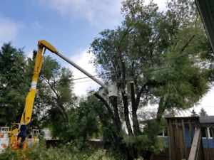 ISO a GOOD CONDITION bucket truck
