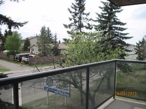 1 MONTH FREE RENT with 1 YEAR LEASE - 2 Bedroom , Great Location Edmonton Edmonton Area image 6