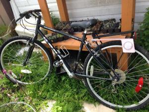 Vintage Kona Bike