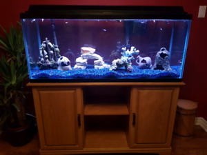 75G fish tank / aquarium in Cole Harbour