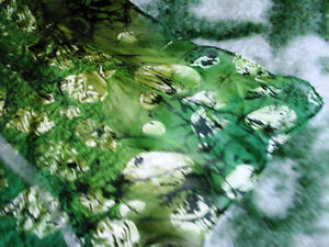 EMERALD and GOLD! An author's thing in the single copy! London Ontario image 4